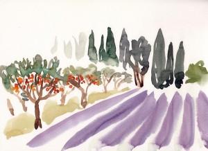Provence.7.2014_827x601